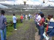 Missão do Banco Mundial e governo de Moçambique visita Biofábrica de Cacau