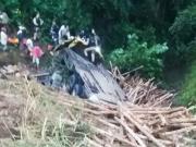 Motorista fica ferido após caminhão cair em uma ribanceira