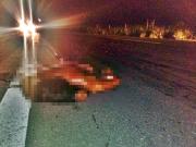Mulher é atropelada na BR-101 e tem corpo partido ao meio próximo à Itagimirim