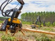 Veracel lança edição do curso para formação de Operadores de Máquinas Florestais – Harvester