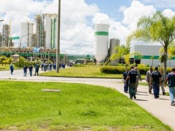 Veracel Celulose divulga edital para contratação de estagiário de nível superior