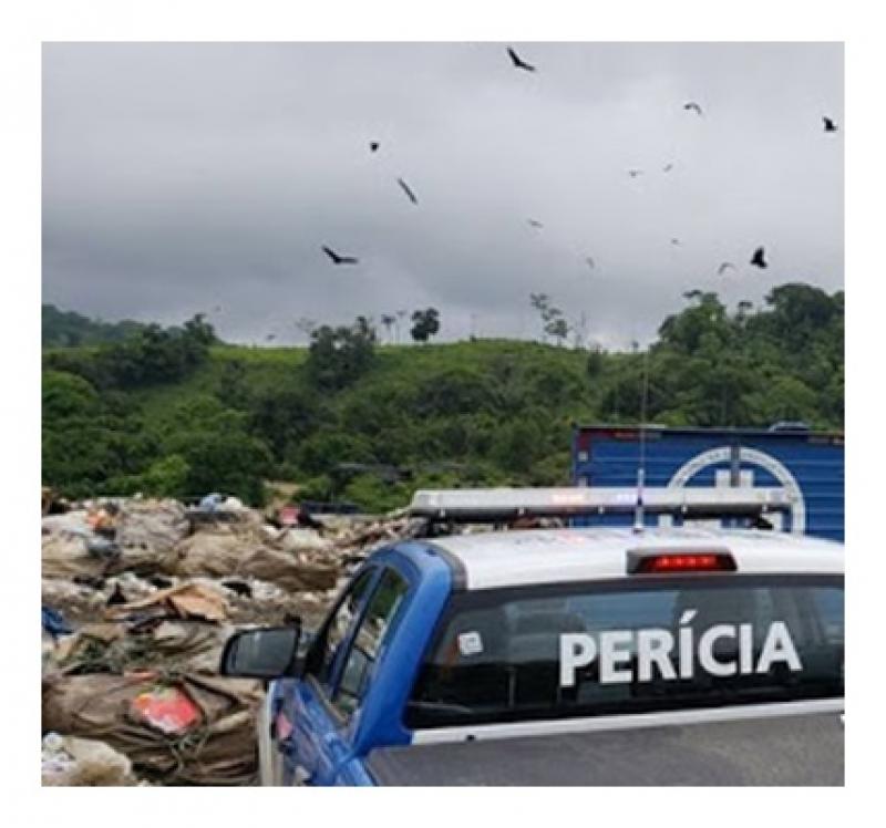Foto do site Verdinho Itabuna