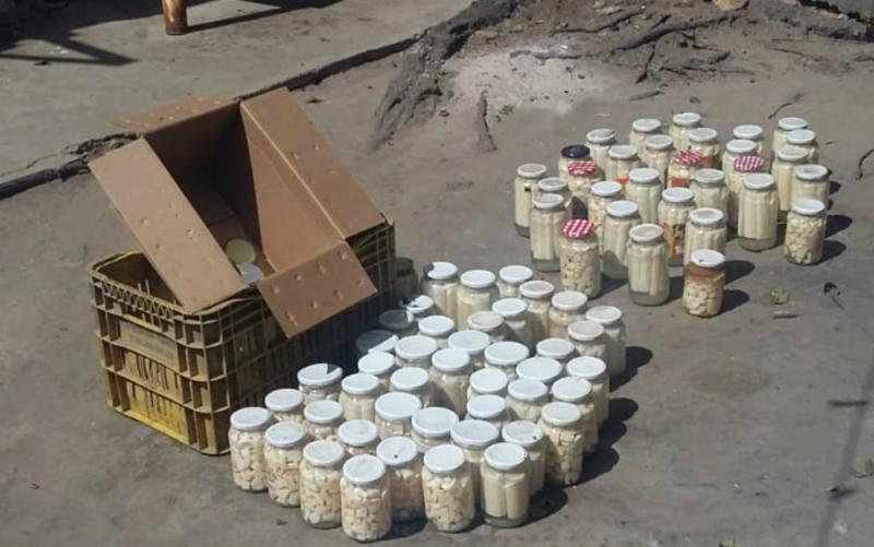 136 potes de palmito foram apreendidos. (Divulgação/Polícia Civil)