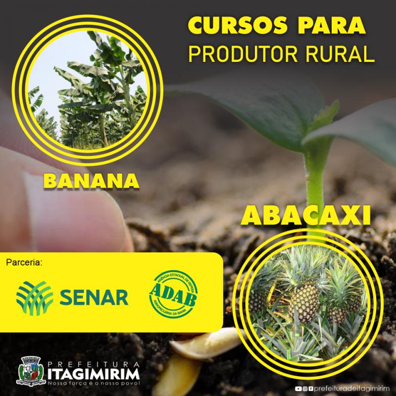 ASCOM-Prefeitura de Itagimirim (Divulgação)