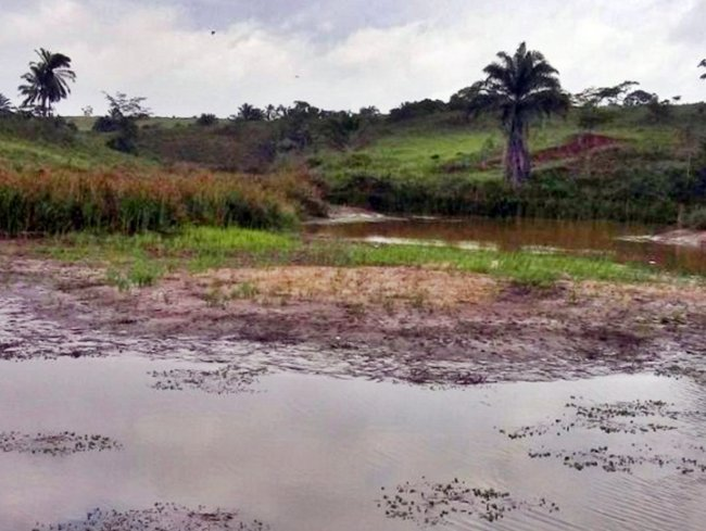 Nível do Rio Limoeiro que abastece Itagimirim está abaixo do limite aceitável. (Divulgação)