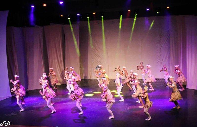 O projeto possui 309 componentes ativamente engajados nas modalidades de ballet, musicalização, canto e flauta doce, violão, teatro e orquestra experimental (ASCOM)