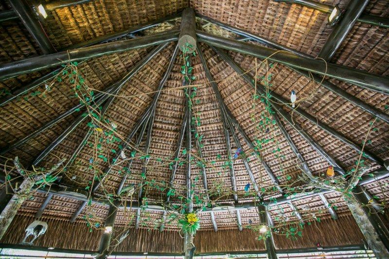 Réplicas de aves expostas no Centro de Visitantes (ASCOM)