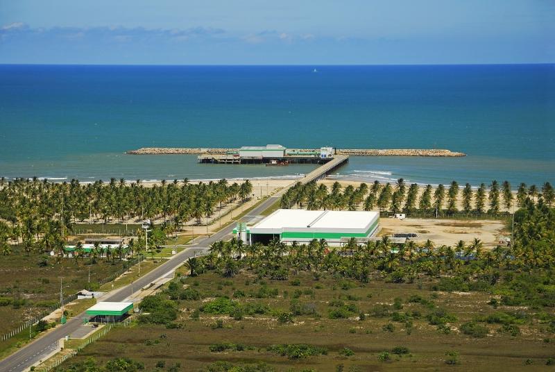 A Veracel produz em média 3.130t de celulose por dia, que são transportadas diariamente da fábrica ao terminal de Belmonte. (Divulgação)