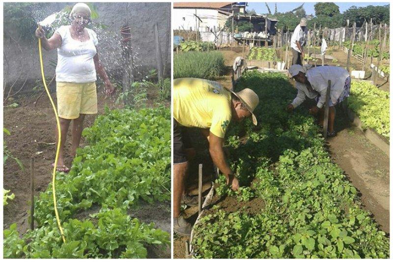 Produtores rurais ficavam dias sem água e perdiam a produção da horta (ASCOM)