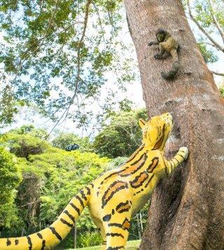 Esta exposição representa os diálogos que não conseguimos presenciar e que existem dentro das florestas, - destacou ao citar a cena de uma réplica de jaguatirica perseguindo sua presa. (Foto: ASCOM / Veracel)