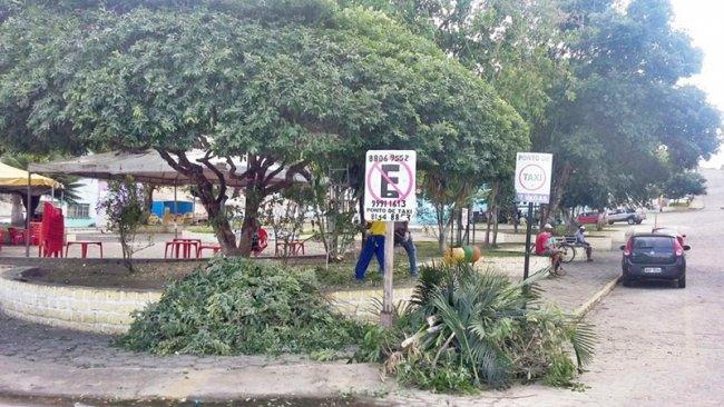 A poda começou esta semana, pela Praça Castro Alves, e vai abranger toda a cidade. (ASCOM)