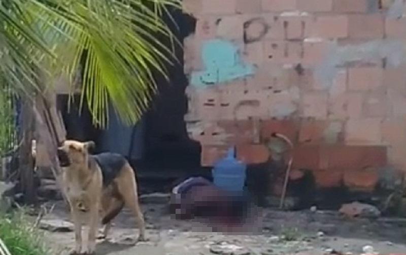 Cachorro ficou diante do corpo da vítima. (Reprodução: Liberdade News)