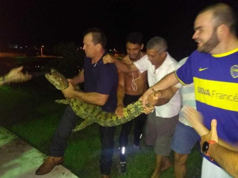 Momento em que moradores capturam o animal. (Leandro Lembranci/ Arquivo Pessoal)