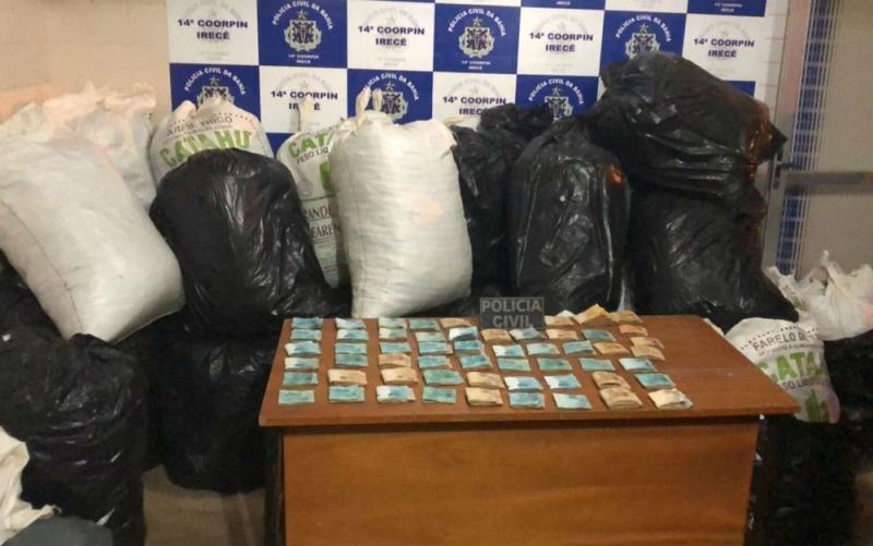 Três caminhonetes foram utilizadas para transportar a droga até a delegacia. (Foto: Divulgação/Polícia Civil)<br />