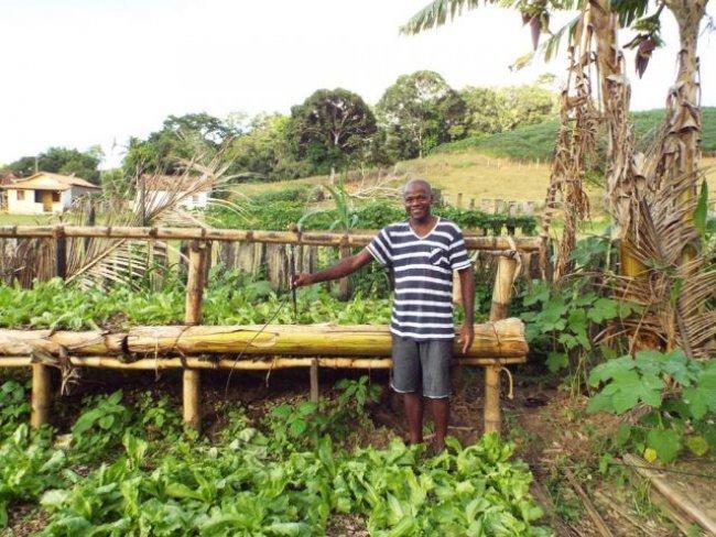 Alimentos saudáveis são produzidos em União Baiana. (Foto: Arquivo pessoal)