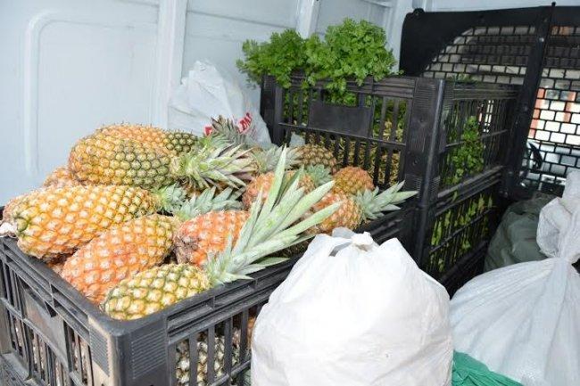 Prefeitura de Eunápolis (BA), por meio da Secretaria de Agricultura e Interior, investiu no ano de 2015 R$ 660.000,00 na Agricultura Familiar eunapolitana. (Foto: Antônio Varjão)